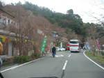 奥琵琶湖の海津大崎の桜